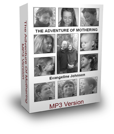 adventuremotheringmp33dsm-w.png