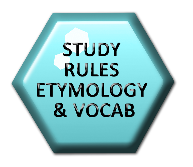 etyma-rules-vocab-nationalspellingbee-hexco.png