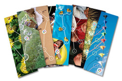 16pt Full Color Bookmarks
