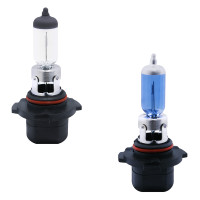 H10 Halogen Headlight Bulbs