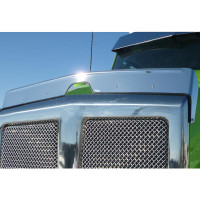 Kenworth T880 Stainless Steel Bug Deflector