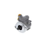 Freightliner Power Steering Pump FTL14-14323-000