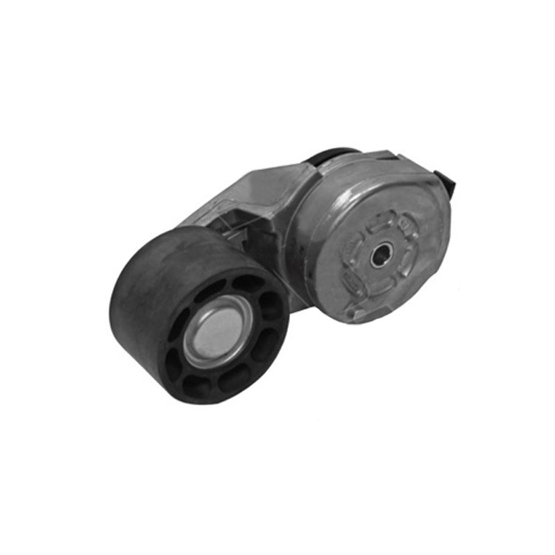 Dayco Tensioner Assembly 4059202