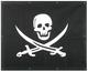 Kenworth W900L Extended Hood Pirate Skull Bug Screen