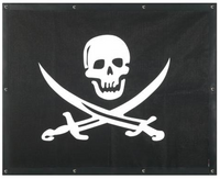 Peterbilt 377 378 379 Pirate Skull Bug Screen