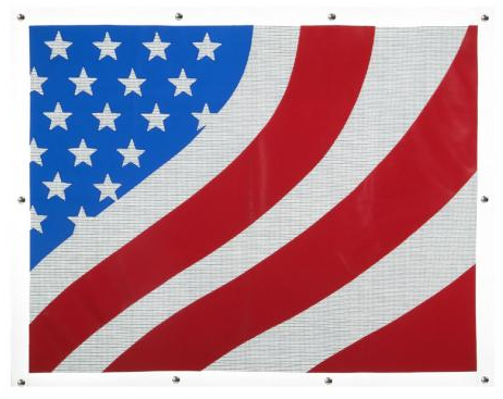 Kenworth W900L Extended Hood American Flag Bug Screen