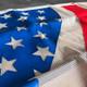 Freightliner Century American Flag Bug Screen - Close