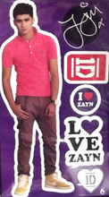 One Direction 1D Peel and Stick Reusable Wall Decal Stickers - Zayn