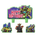 Teenage Mutant NInja Turtles 4 Piece Molded Candle