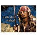 Pirates of the Caribbean Pack of 8 Invitations