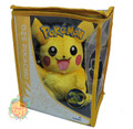 Pokemon Pikachu 20th Anniversary Small Toy Plush
