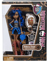 Monster High Rebecca Steam Plastic Doll and Accessories