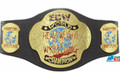 WWE ECW Championship Adjustable Waist Belt