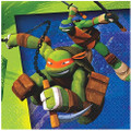 Napkins - Ninja Turtles - Small - Paper - 2Ply - 16ct - 10 X 10 in