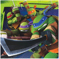 Napkins - Ninja Turtles - Large - Paper - 2Ply - 16ct - 13 X 13 in