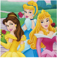 Napkins - Disney Princess - Large - Paper - 2Ply - 16ct - 13 X 13 in - Fairytale Princess