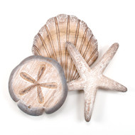 Large Shell Cluster Wooden Wall Sculpture  CW053