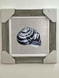 Framed Shell Painting 26 x 26""