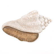 Wooden Conch Wall Art CW057