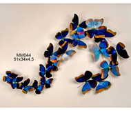 Blue Morpho, S Shape