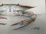 "Blue Crab Framed Art Claw Down 12"" X 19"""