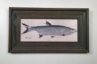 "Tarpon Framed Artwork 12 x 19"""