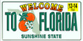 Florida Plate Beach Towel (30x60)