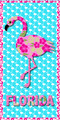 Fun Flamingo Florida Velour Towel