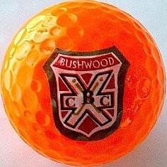 orangegolfballs-61860-1358273958-1280-1280.jpg