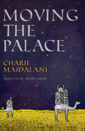 Moving the Palace - ebook