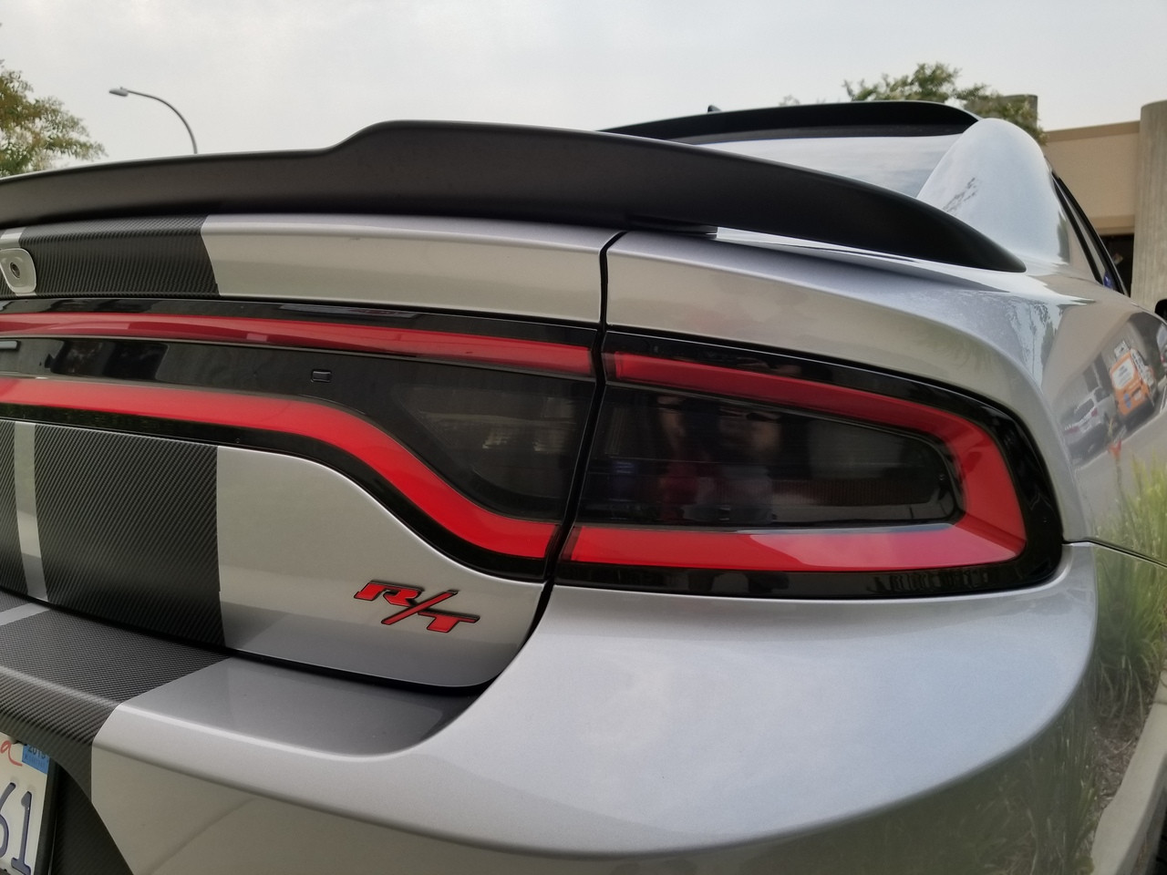 Dodge Charger Tail Lights >> Smoked Tail Light Insert Overlays Tint 15 18 Charger Jdmfv