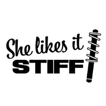 SHE LIKES IT STIFF - DECAL