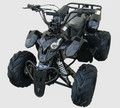 110cc PL Kids ATV Full Body Plastic