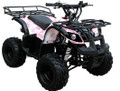 (RIDER 7) KIDS 110cc ATV with Automatic Transmission, with Foot Brake, Remote Control and Rear Rack