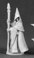 Anirion- Wood Elf Wizard