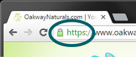 The browser padlock and https are important
