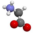 Category:  Amino Acids