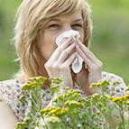 Health Concern:  Allergy & Sinus