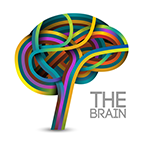 Health Concern:  Brain & Neurological
