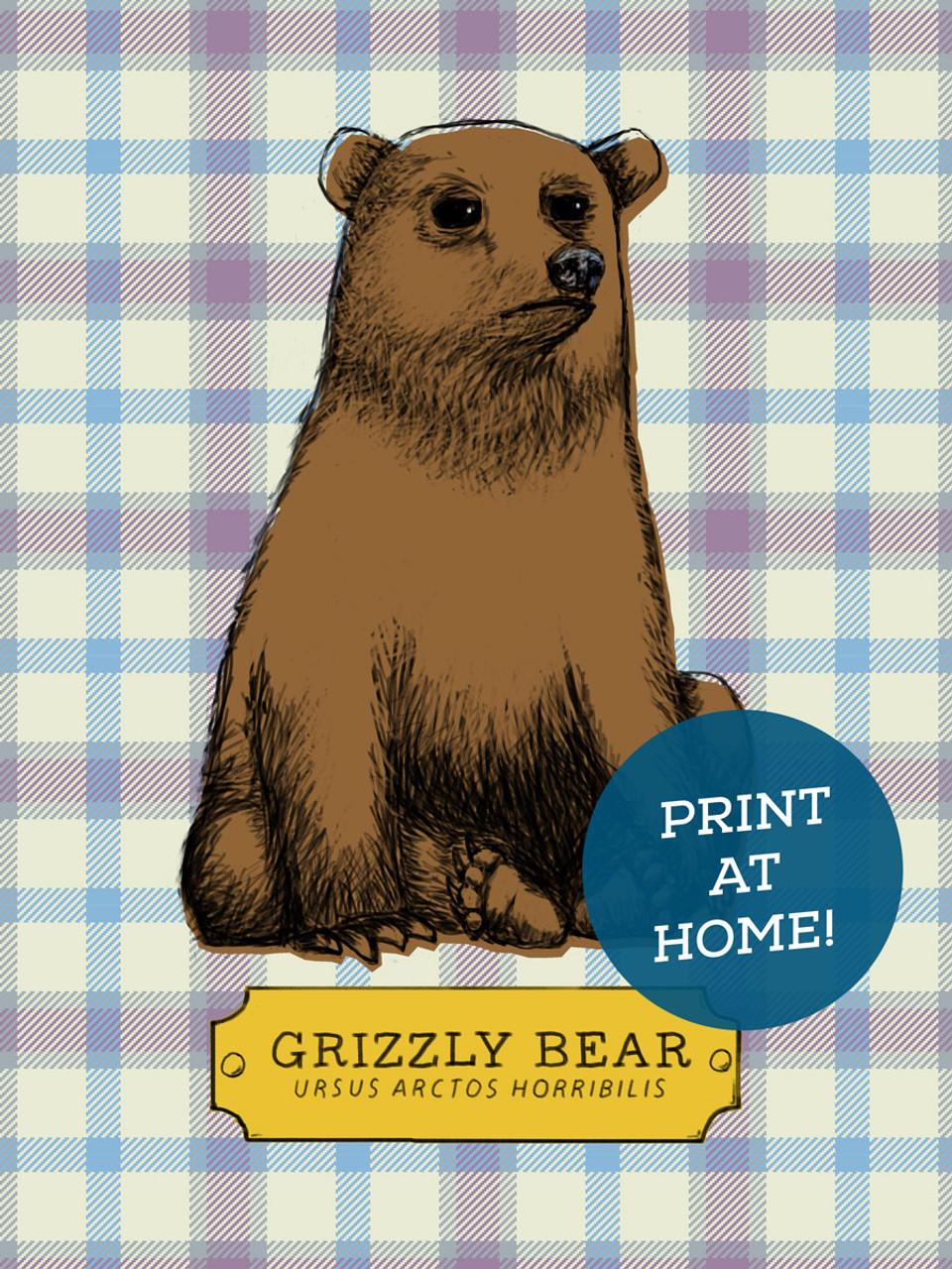 illustrated grizzly bear printable earmark social goods inc