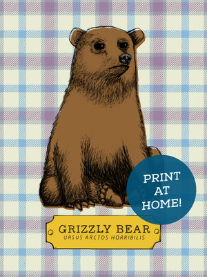 Illustrated Grizzly Bear Printable