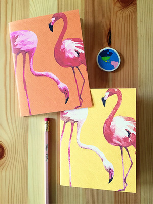 Super fun Flamingo notebooks.