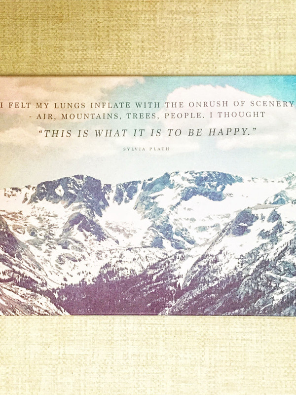 Sylvia Plath Stretched Fabric Art Print - Limited Edition