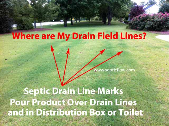 Septic Tank Treatment Products Septic Flow Septic Tank