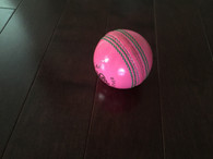 BA Indoor Pink Cricket ball
