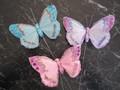 Pastel Jewel Butterfly
