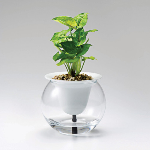 SuiSui Self Watering Planter, 汲汲綠 - 日本有田燒自動吸水花盆 | LOTUSmart (HK) - 香港樂濤