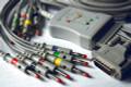 Schiller 10 Lead ECG/EKG Cable AHA Banana 4.0mm FDA/CE long screw