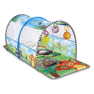Baby Einstein 2-in-1 Safari Adventure Gym and Tunnel