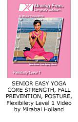 senior-stretch-level-1-video-on-demand-mirabai-holland-.jpg